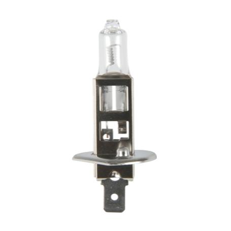 Ampoule 24V P14.5s H1 HD