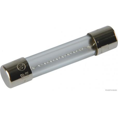 Fusibles VERRE 10A (x10) Diam.6,3 mm Long.32 mm
