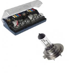 Ampoules 12V et 24V